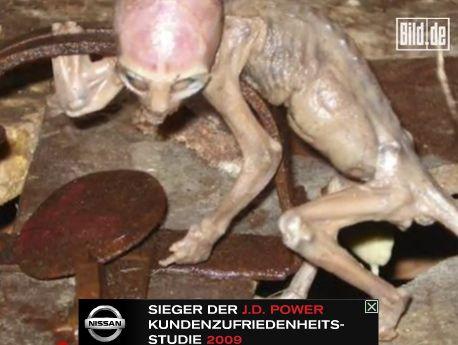 墨西哥发现婴儿外星人 被农夫活活淹死(组图)
